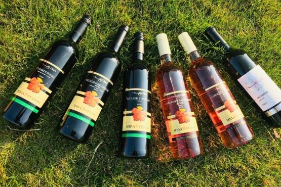 Ochutnajte mladé vína Mrva & Stanko z ročníka 2018 ako prví