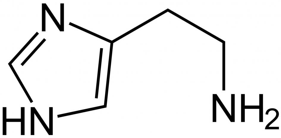 Histamín vo víne MRVA&STANKO